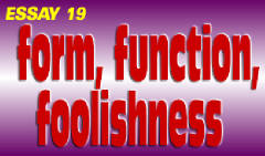 19: Form,  Function,  Foolishness